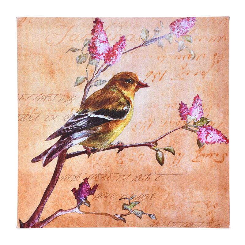 ΚΑΔΡΟ BIRD Νο2 23707 50*50